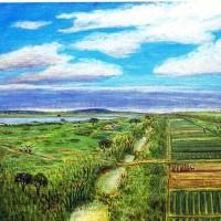 103.最上川の堤外の畑