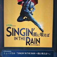 雨に唄えば(2017・ミュージカル)