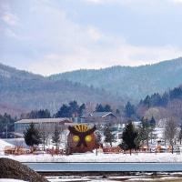 富沢クロスカントリーコースへ(4/4)~雪の下にも春、発見!