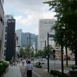 名古屋桜通  おじ散歩