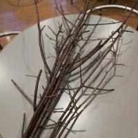 枝とヒールとノコギリと