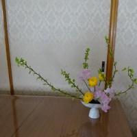 二月のお花 春の香りがします(´∀`*)
