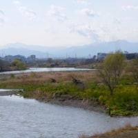 雨の割には増水せず…多摩川増水情報(平成29.3.27)