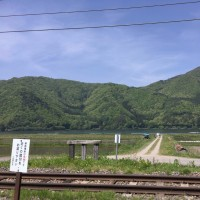 緑のAACR:景色編
