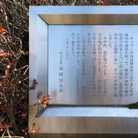 2月22日(水)日野市WG-9.13.暑さを凌いで玉川上水を歩く-下見