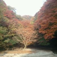 ボードウォークで、秋を満喫!