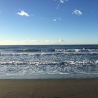 今日の波  1月16日