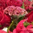 大輪のお花に囲まれ、、、。