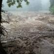 洪水にやられてしまいました(その4)