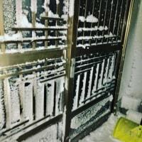 昨日の夜は この冬一番の最悪な地吹雪でした。