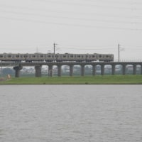 常陸利根川を渡るE209系電車