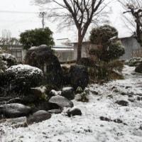 いつまで続く なごり~雪 ♪