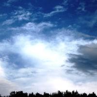 明るい毎日や美しい雲の一つ一つを楽しむーローザ.ルクセンブルク