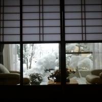 消えたと思ったら又も積雪37センチ・・・雪かき3回・・!!!