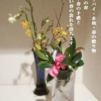寒い時期に数少ない香りのよい蝋梅の花が咲いているのですね~