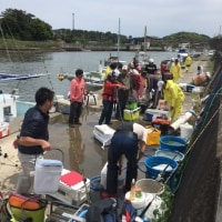 第6回真鯛釣大会