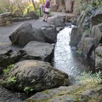3つの泉に心魅かれ写真を撮って来ました