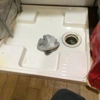 洗濯機の納品、820円出てきました。