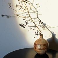 水蝋樹(イボタノキ)の実