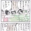 まっちゅる大王~バカンス編~(13)