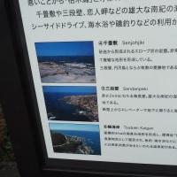 京大ウィークス・白浜と道成寺(7)