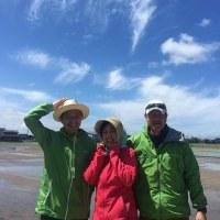 東京からのお客様が田植えを体験!