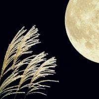 満月を一緒に楽しみましょう♬