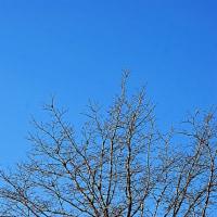 霧が出て、青空が出て、風が出て