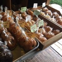 ☆ きのこdeパン祭り 感謝です ☆