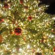 OMU☆CHAのクリスマスコンサートが終了しました~。
