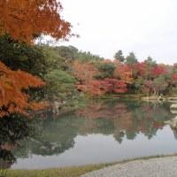 紅葉の京都(天龍寺~嵐山公園)