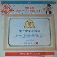 ☆愛犬検定合格?!☆