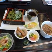 夏越の祓いに東国三社2017