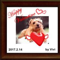 Happyカード by vivi ∪・ω・∪