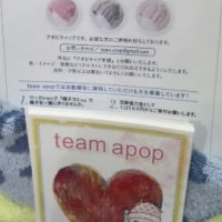 アポピキャップを作りに名古屋に行って来ました。