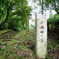 小山田から小野路へ探検散歩①