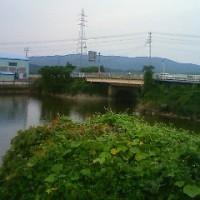 歩道橋FILE(番外編73)