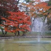 """秋色に染まる""""笹流ダム""""..."""
