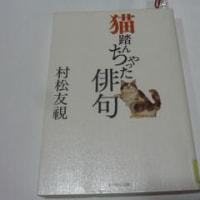 読書・猫踏んじゃった俳句と土産と頂き物