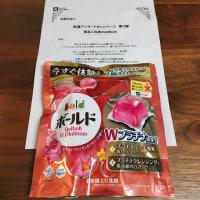 P&Gジャパン ボールド ジェルボールWプラチナ  【当選】