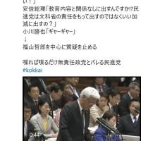 【国会2/28参院予算委員会】小川『地中にゴミがあっても関係ないじゃないか!』(゜o゜)それ、小池(緑)に言ってくれない?