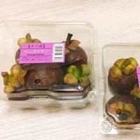 トロピカルフルーツ マンゴスチン