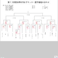 U15愛知県大会 ルミナス初戦