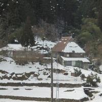 3月16日(木曜日)「雪中田園」(ピエロ)