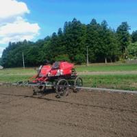 大豆は種後に除草剤散布です