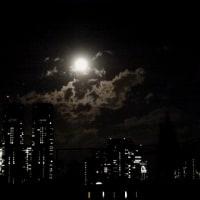 新年の満月  今宵月 月光浴パワー 炸裂!! 新宿都庁に上るお月さま