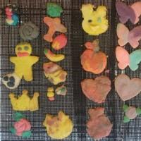 ねんどクッキー6/18 シフォンケーキとクッキーのお店うさぎとみかん