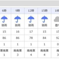 明日は雨のようです・・・・・