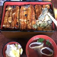 鰻の特上を川豊本店て食味中