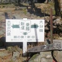 一番の想い出の場所で賢の供養をした後安倍奥の最高峰までハイキング